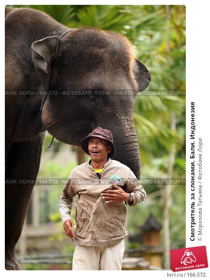 Смотритель за слонами. Бали. Индонезия, фото № 166572, снято 30 октября 2007 г. (c) Морозова Татьяна / Фотобанк Лори