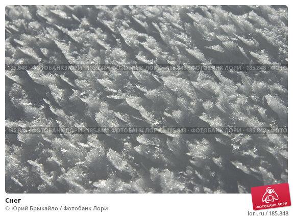 Снег, фото № 185848, снято 3 января 2008 г. (c) Юрий Брыкайло / Фотобанк Лори