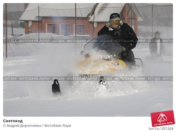 Снегоход, фото № 257024, снято 25 июня 2017 г. (c) Андрей Доронченко / Фотобанк Лори