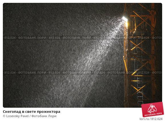 Купить «Снегопад в свете прожектора», фото № 812024, снято 16 сентября 2019 г. (c) Losevsky Pavel / Фотобанк Лори