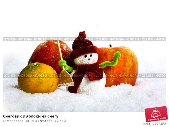Снеговик и яблоки на снегу, фото № 272836, снято 19 ноября 2006 г. (c) Морозова Татьяна / Фотобанк Лори