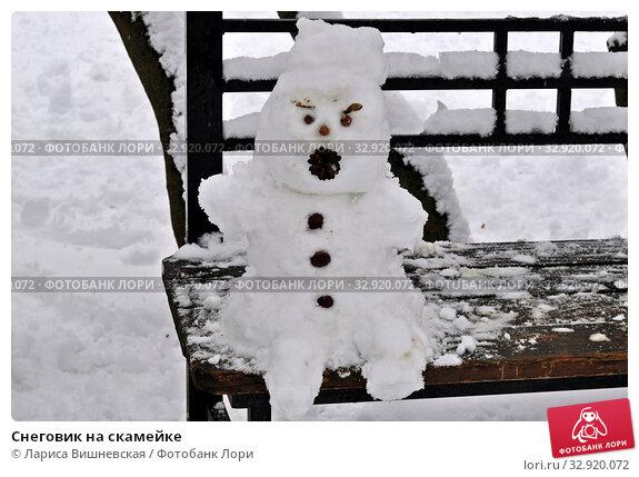 Купить «Снеговик на скамейке», фото № 32920072, снято 11 января 2020 г. (c) Лариса Вишневская / Фотобанк Лори