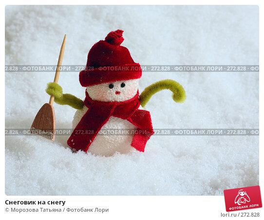 Снеговик на снегу, фото № 272828, снято 19 ноября 2006 г. (c) Морозова Татьяна / Фотобанк Лори