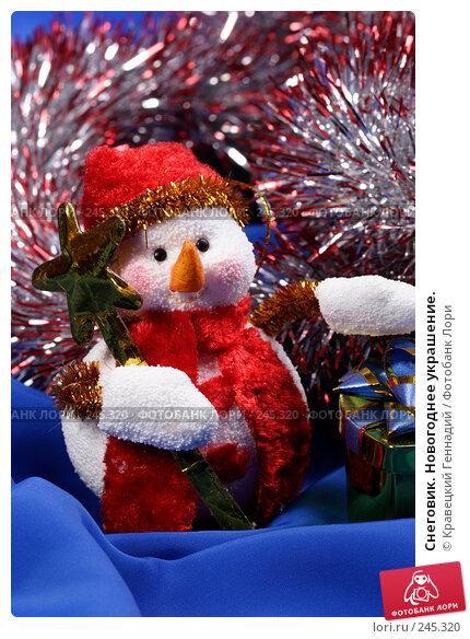 Снеговик. Новогоднее украшение., фото № 245320, снято 11 ноября 2004 г. (c) Кравецкий Геннадий / Фотобанк Лори