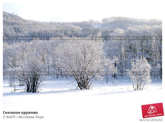 Снежное кружево, фото № 214212, снято 18 декабря 2007 г. (c) RedTC / Фотобанк Лори