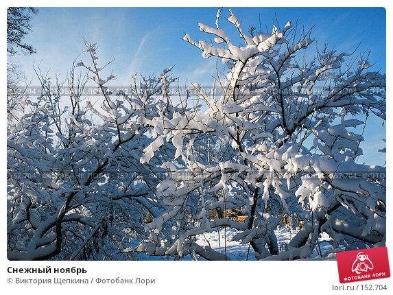 Купить «Снежный ноябрь», фото № 152704, снято 21 апреля 2018 г. (c) Виктория Щепкина / Фотобанк Лори