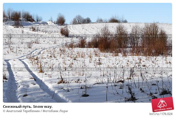 Снежный путь. Snow way., фото № 176024, снято 5 января 2008 г. (c) Анатолий Теребенин / Фотобанк Лори