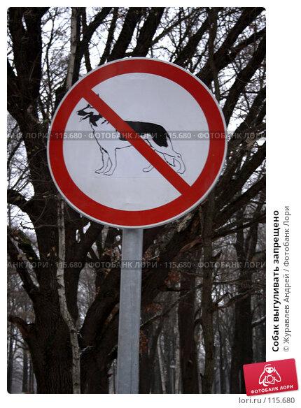Собак выгуливать запрещено, эксклюзивное фото № 115680, снято 13 ноября 2007 г. (c) Журавлев Андрей / Фотобанк Лори