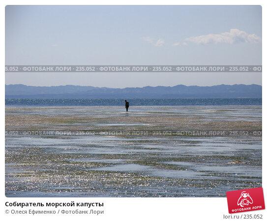 Собиратель морской капусты, фото № 235052, снято 2 июля 2006 г. (c) Олеся Ефименко / Фотобанк Лори