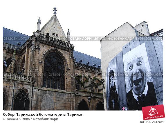 Собор Парижской богоматери в Париже, фото № 261908, снято 27 декабря 2007 г. (c) Tamara Sushko / Фотобанк Лори