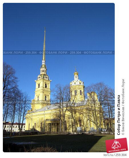 Собор Петра и Павла, фото № 259304, снято 26 февраля 2008 г. (c) Бяков Вячеслав / Фотобанк Лори