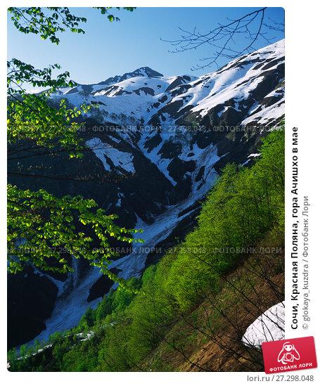 Купить «Сочи, Красная Поляна, гора Ачишхо в мае», фото № 27298048, снято 15 февраля 2019 г. (c) glokaya_kuzdra / Фотобанк Лори