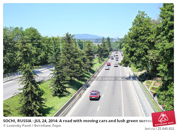 Купить «SOCHI, RUSSIA - JUL 24, 2014: A road with moving cars and lush green surroundings on the sides in Adler», фото № 25840832, снято 24 июля 2014 г. (c) Losevsky Pavel / Фотобанк Лори