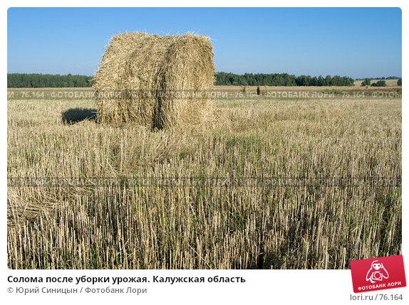Солома после уборки урожая. Калужская область, фото № 76164, снято 11 августа 2007 г. (c) Юрий Синицын / Фотобанк Лори
