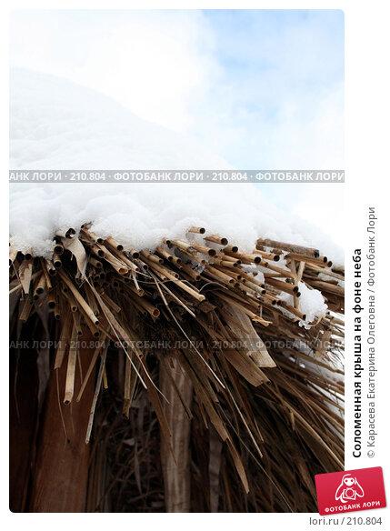 Соломенная крыша на фоне неба, фото № 210804, снято 3 февраля 2008 г. (c) Карасева Екатерина Олеговна / Фотобанк Лори