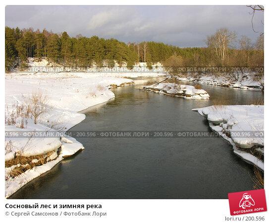 Купить «Сосновый лес и зимняя река», фото № 200596, снято 3 февраля 2008 г. (c) Сергей Самсонов / Фотобанк Лори