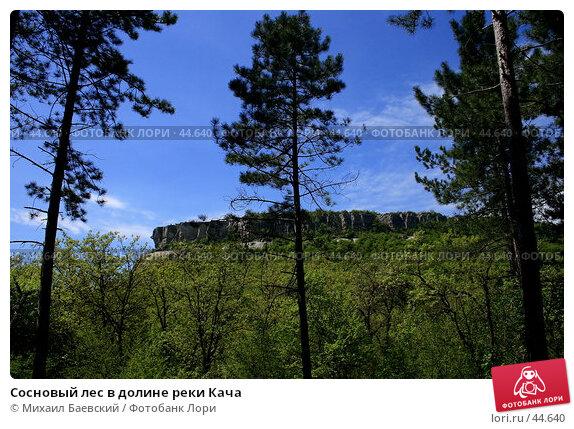 Сосновый лес в долине реки Кача, фото № 44640, снято 13 мая 2007 г. (c) Михаил Баевский / Фотобанк Лори