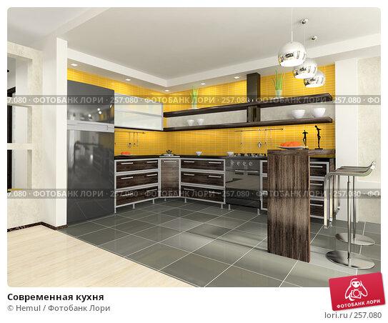 Купить «Современная кухня», иллюстрация № 257080 (c) Hemul / Фотобанк Лори