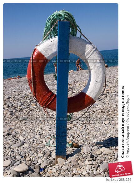 Спасательный круг и вид на пляж, фото № 288224, снято 12 сентября 2007 г. (c) Андрей Андреев / Фотобанк Лори