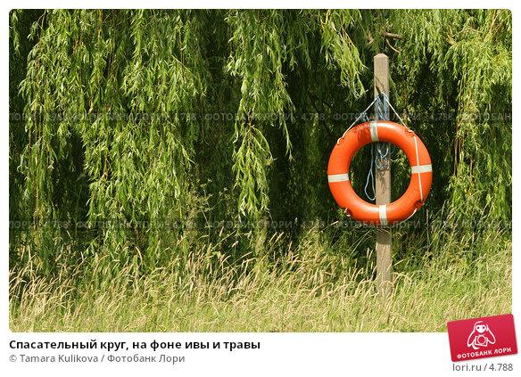 Спасательный круг, на фоне ивы и травы, фото № 4788, снято 17 июня 2006 г. (c) Tamara Kulikova / Фотобанк Лори