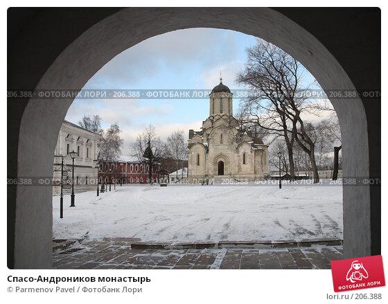 Спасо-Андроников монастырь, фото № 206388, снято 20 февраля 2008 г. (c) Parmenov Pavel / Фотобанк Лори