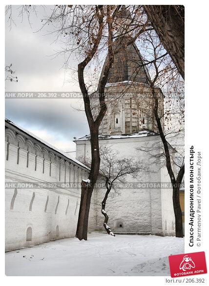 Купить «Спасо-Андроников монастырь», фото № 206392, снято 20 февраля 2008 г. (c) Parmenov Pavel / Фотобанк Лори