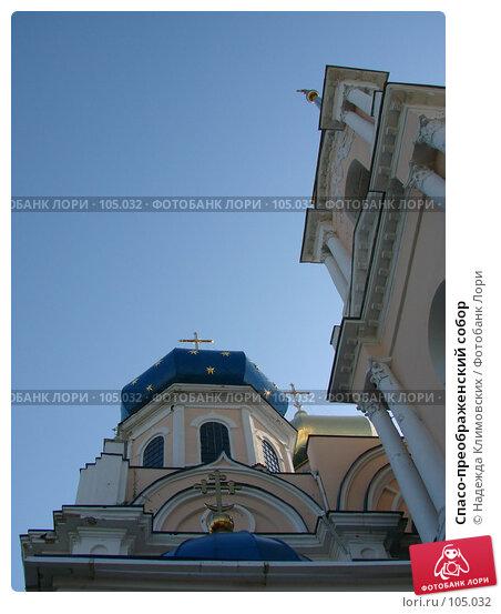 Спасо-преображенский собор, фото № 105032, снято 21 января 2017 г. (c) Надежда Климовских / Фотобанк Лори