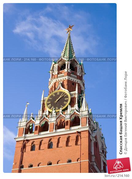 Спасская башня Кремля, фото № 214160, снято 24 января 2008 г. (c) Донцов Евгений Викторович / Фотобанк Лори