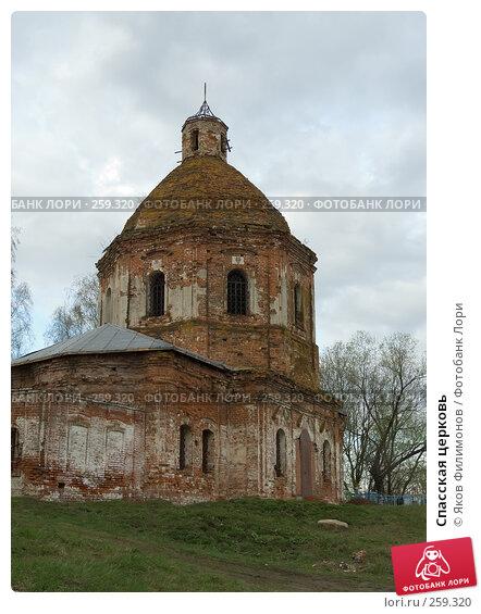 Спасская церковь, фото № 259320, снято 19 апреля 2008 г. (c) Яков Филимонов / Фотобанк Лори