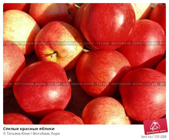 Купить «Спелые красные яблоки», эксклюзивное фото № 131028, снято 30 сентября 2007 г. (c) Татьяна Юни / Фотобанк Лори