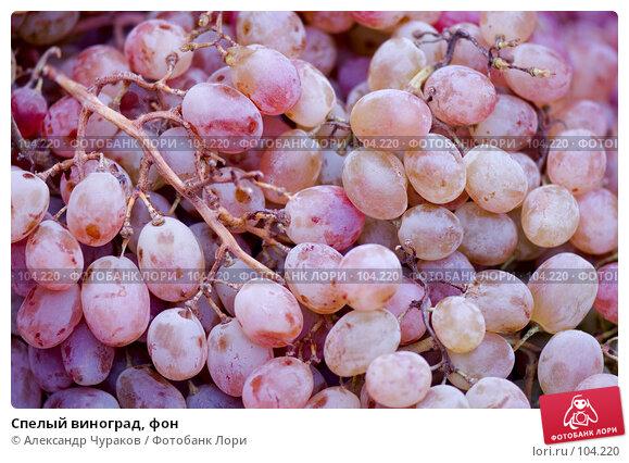 Купить «Спелый виноград, фон», фото № 104220, снято 23 апреля 2018 г. (c) Александр Чураков / Фотобанк Лори
