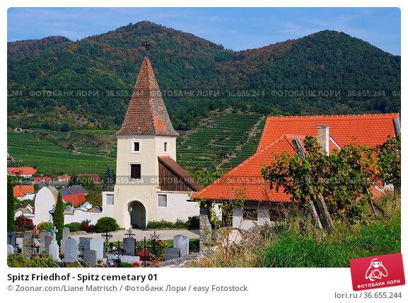 Spitz Friedhof - Spitz cemetary 01. Стоковое фото, фотограф Zoonar.com/Liane Matrisch / easy Fotostock / Фотобанк Лори