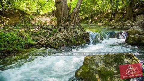Купить «Splashes of rapid river current fly in the si», видеоролик № 27075320, снято 2 мая 2015 г. (c) Владимир Кравченко / Фотобанк Лори