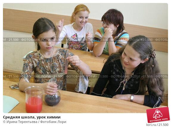 Купить «Средняя школа, урок химии», эксклюзивное фото № 21500, снято 2 августа 2006 г. (c) Ирина Терентьева / Фотобанк Лори