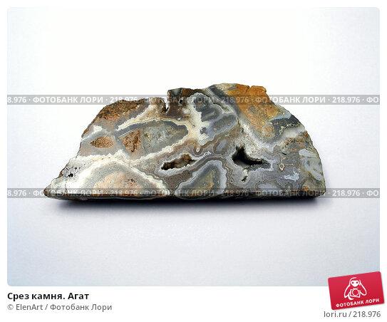 Купить «Срез камня. Агат», фото № 218976, снято 19 апреля 2018 г. (c) ElenArt / Фотобанк Лори