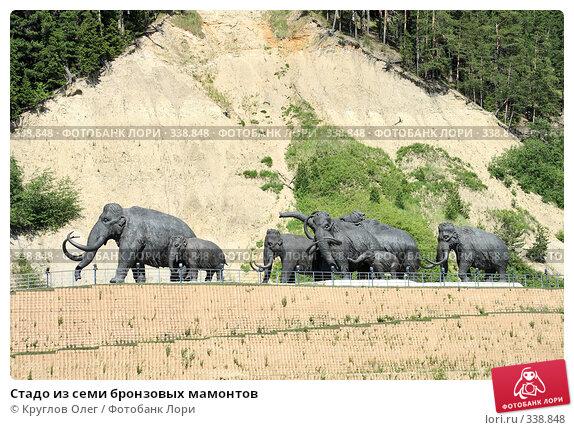 Стадо из семи бронзовых мамонтов, фото № 338848, снято 23 июня 2008 г. (c) Круглов Олег / Фотобанк Лори