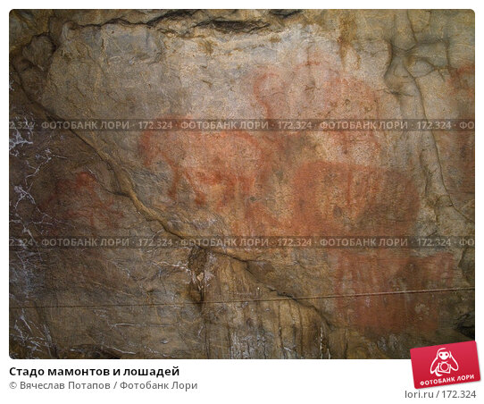 Купить «Стадо мамонтов и лошадей», фото № 172324, снято 18 октября 2007 г. (c) Вячеслав Потапов / Фотобанк Лори