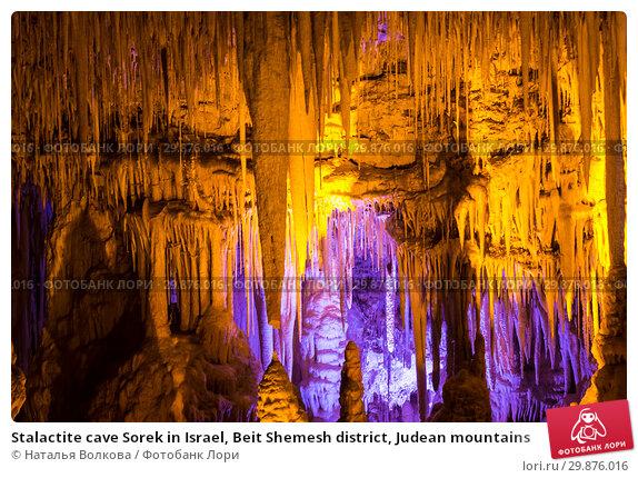 Купить «Stalactite cave Sorek in Israel, Beit Shemesh district, Judean mountains», фото № 29876016, снято 9 июня 2018 г. (c) Наталья Волкова / Фотобанк Лори