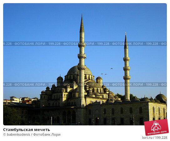 Стамбульская мечеть, фото № 199228, снято 20 июня 2004 г. (c) Бабенко Денис Юрьевич / Фотобанк Лори