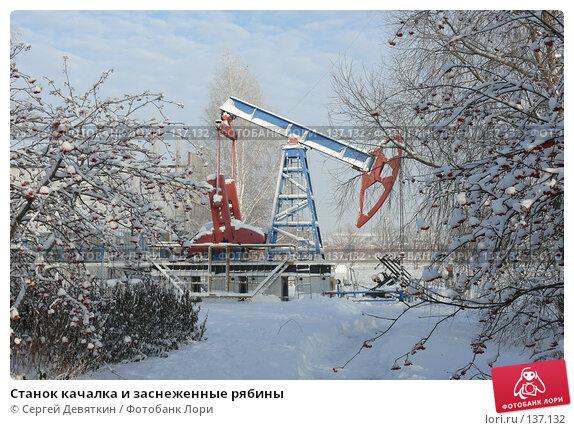 Станок качалка и заснеженные рябины, фото № 137132, снято 4 декабря 2007 г. (c) Сергей Девяткин / Фотобанк Лори