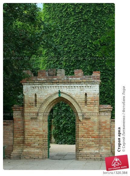 Старая арка, фото № 320384, снято 8 июня 2008 г. (c) Сергей Литвиненко / Фотобанк Лори