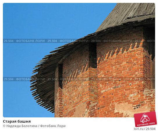 Старая башня, фото № 29504, снято 13 мая 2006 г. (c) Надежда Болотина / Фотобанк Лори