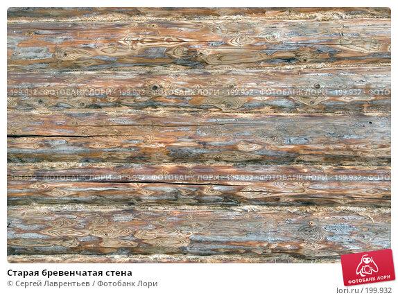 Старая бревенчатая стена, фото № 199932, снято 9 февраля 2008 г. (c) Сергей Лаврентьев / Фотобанк Лори