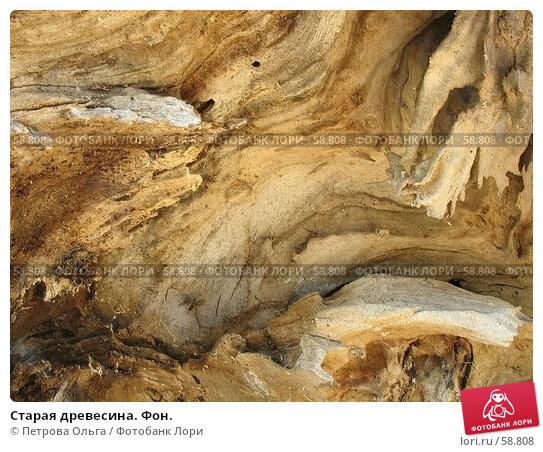 Купить «Старая древесина. Фон.», фото № 58808, снято 6 июля 2007 г. (c) Петрова Ольга / Фотобанк Лори
