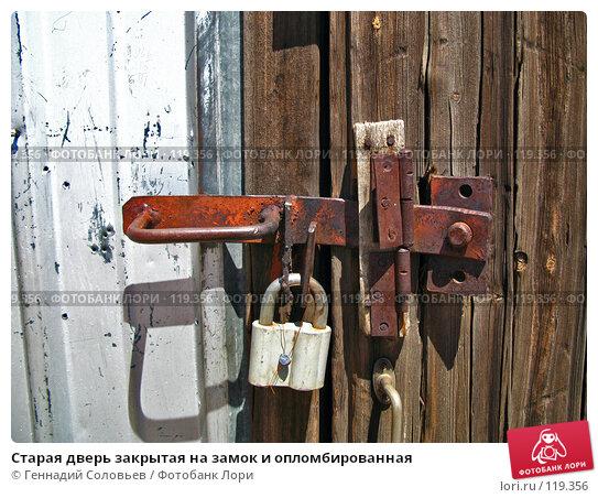 Старая дверь закрытая на замок и опломбированная, фото № 119356, снято 20 июня 2007 г. (c) Геннадий Соловьев / Фотобанк Лори
