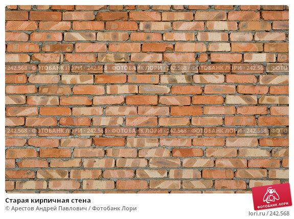 Старая кирпичная стена, фото № 242568, снято 30 марта 2008 г. (c) Арестов Андрей Павлович / Фотобанк Лори