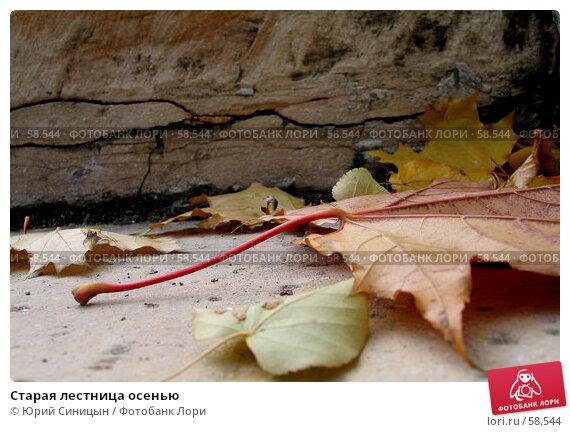Купить «Старая лестница осенью», фото № 58544, снято 16 октября 2004 г. (c) Юрий Синицын / Фотобанк Лори