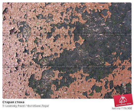 Купить «Старая стена», фото № 116900, снято 18 февраля 2006 г. (c) Losevsky Pavel / Фотобанк Лори