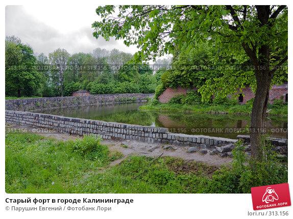Купить «Старый форт в городе Калининграде», фото № 313156, снято 23 марта 2018 г. (c) Парушин Евгений / Фотобанк Лори