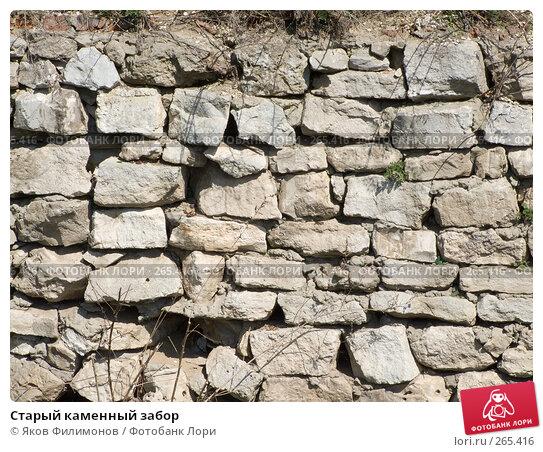 Старый каменный забор, фото № 265416, снято 26 апреля 2008 г. (c) Яков Филимонов / Фотобанк Лори